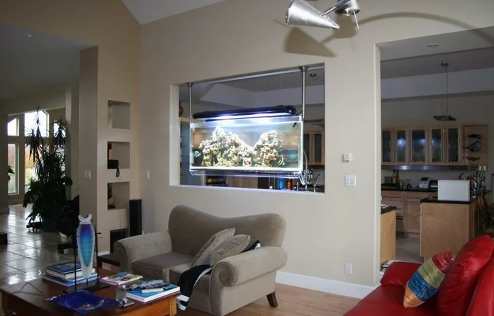 перегородка-аквариум