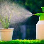 Как повысить влажность воздуха в комнате без увлажнителя – зимой и летом